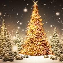 Jak spędzić samotnie Boże Narodzenie?