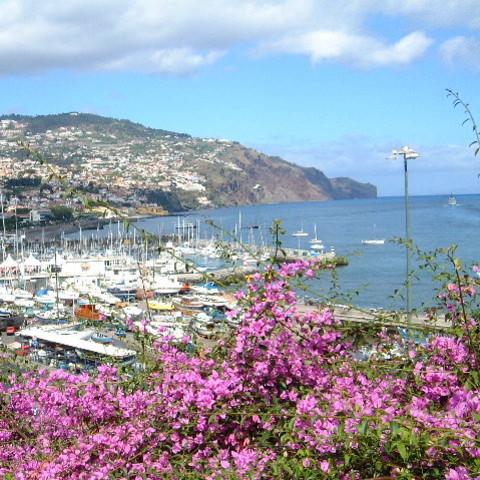 Co ciekawego jest na Maderze?