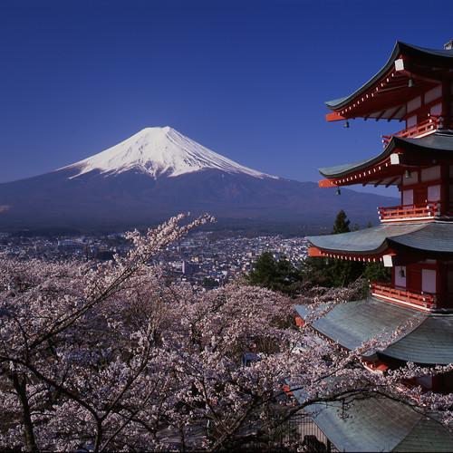 Na co powinieneś zwrócić uwagę, gdy będziesz w Japonii?