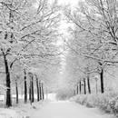 Jak zachować zdrowie zimą?