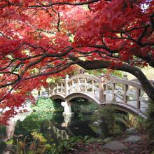 Jak się zachowywać podczas wizyty w Japonii?
