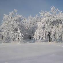 Suwalszczyzna – sposób na ferie zimowe