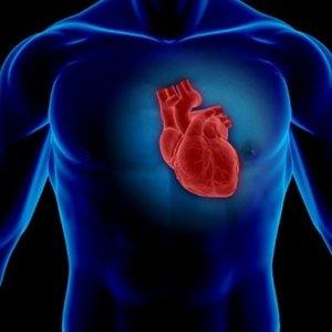 Jak się odżywiać, aby obniżyć poziom cholesterolu?