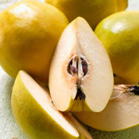 Żel jabłkowy
