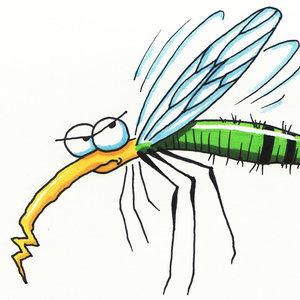 Jak nie dopuścić do inwazji komarów?