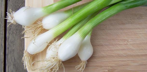 W jaki sposób uprawiać w domu zieloną cebulkę?