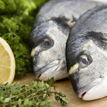 Dzień Ryby – jak go obchodzić?