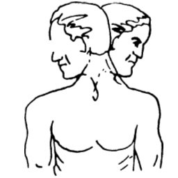 Ćwiczenie 4 – szyja