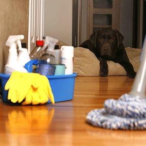Posprzątaj w domu