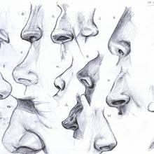 Co mówi o nas kształt nosa?