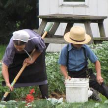 Jak ułatwić sobie pracę w ogrodzie?
