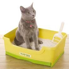 Jak zachować kuwetę kota w czystości?
