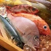 Na co należy zwrócić uwagę przy kupowaniu i przechowywaniu ryb?