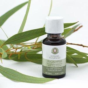 Olejek eukaliptusowym