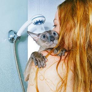 Gdzie kąpiemy kota
