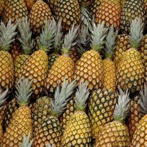 Wybierz odpowiedni owoc