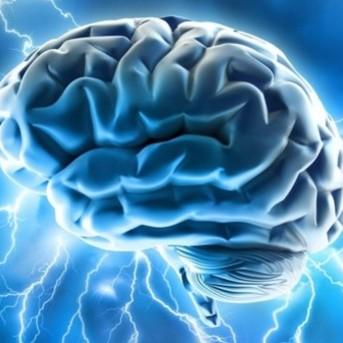 Jak trenować swój mózg?