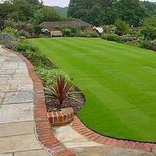 Jak zadbać o swój trawnik?