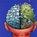 Ćwiczenia na pamięć i koncentrację