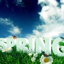 Obchody pierwszego dnia wiosny w różnych krajach Europy