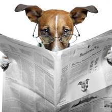 Jak napisać dobry i ciekawy artykuł?