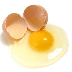 Odżywka z jajek