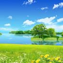 Jak dbać o nasze środowisko?