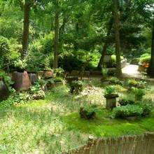 Jak zaaranżować ogródek w wiejskim stylu?