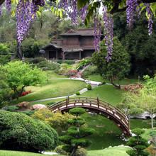 Jak urządzić ogród w stylu japońskim?