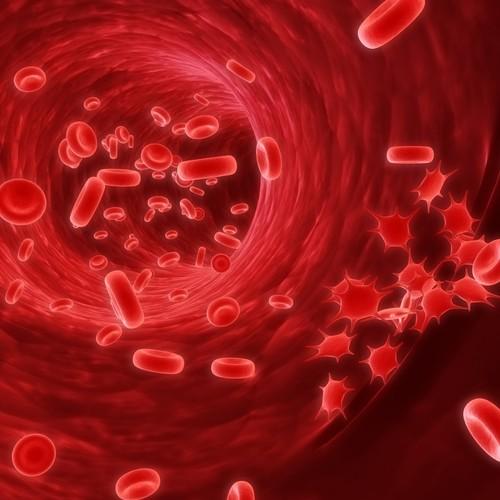 Jak prawidłowo interpretować wyniki badań krwi?