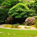 Jak zamienić zwykłe podwórko w swój wymarzony ogród?