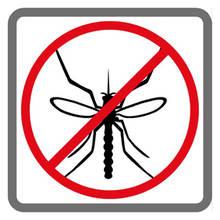 Jak pozbyć się komarów z domu?