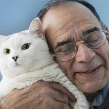 Ile lat miałby twój kot, gdyby był człowiekiem?