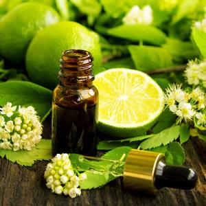 Jak przygotować olejek do aromaterapii na pamięć i koncentrację?