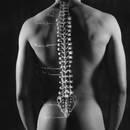 Skuteczne ćwiczenia na bóle kręgosłupa