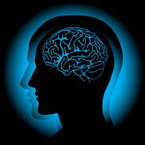 Jak pracuje nasz umysł?