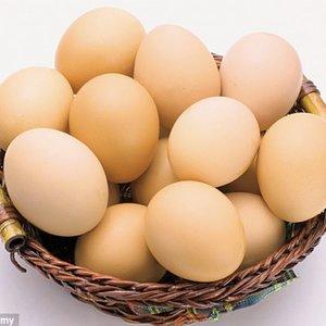 Na co zwracać uwagę, gdy kupujemy jajka?