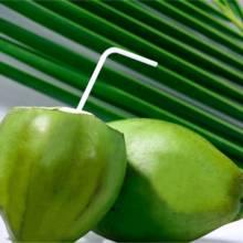 Zalety wody kokosowej