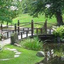 Jak założyć ogród zgodnie z zasadami feng shui?