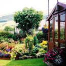 Jak samemu założyć ogród?