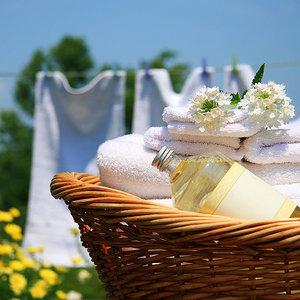 Len w praniu