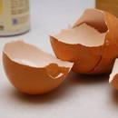 Jak skorupki jaj przydają się w leczeniu osteoporozy?