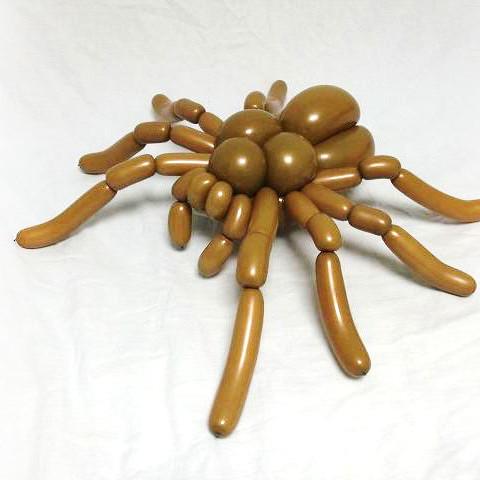 Zabawny pająk z balonu