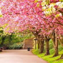 Sposoby na powitanie wiosny