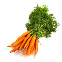 Jak uprawiać marchewkę?