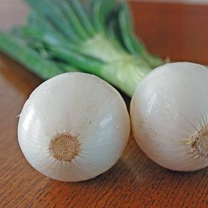 Miejsce dla cebuli