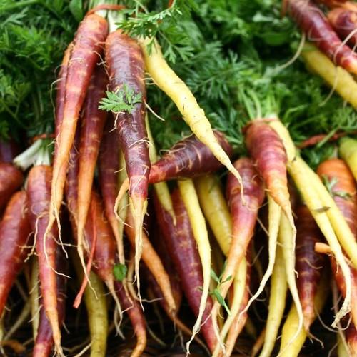 Jak ożywić zwiotczałe warzywa korzenne?
