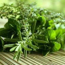 Które zioła najlepiej uprawiać w domu?