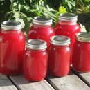 Jak zrobić orzeźwiający sok z rabarbaru?
