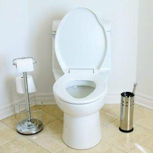 Jaki utrzymać muszlę sedesową w czystości?